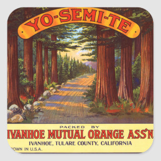 Etiqueta anaranjada de Yo-Semi-Te del vintage