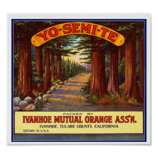 Etiqueta anaranjada de Yo-Semi-Te del vintage Poster