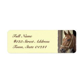 Etiqueta árabe del remite del caballo etiquetas de remite