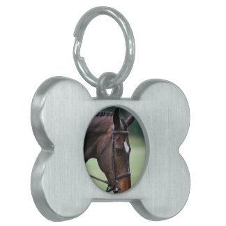 Etiqueta árabe dulce del mascota del caballo placa de nombre de mascota