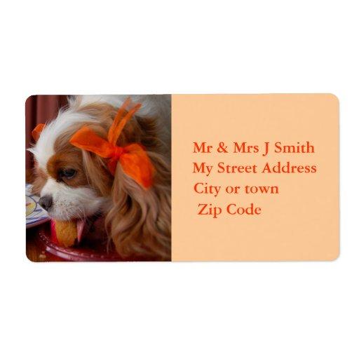 Etiqueta arrogante del perro de aguas del cumpleañ etiquetas de envío