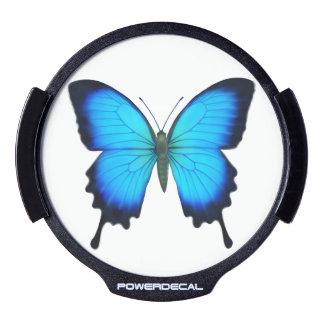 Etiqueta auto del poder de la mariposa azul de sticker LED para ventana
