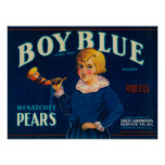 Etiqueta azul del cajón de la pera del muchacho póster