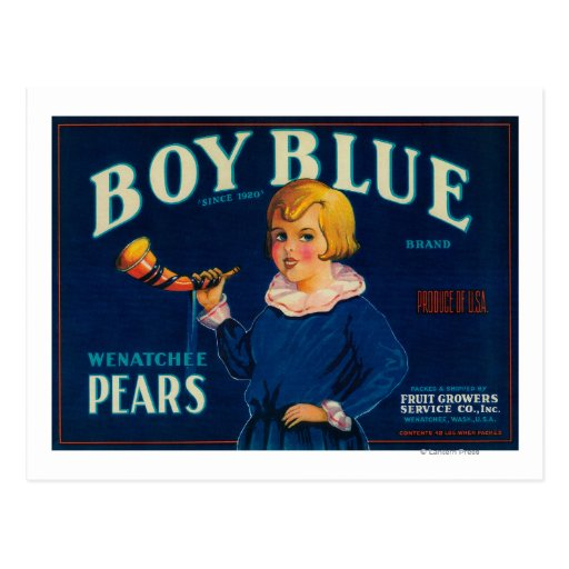 Etiqueta azul del cajón de la pera del muchacho tarjeta postal