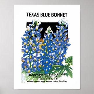 Etiqueta azul del paquete de la semilla del capo d póster