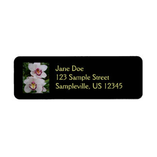Etiqueta blanca del remite de las orquídeas etiqueta de remite