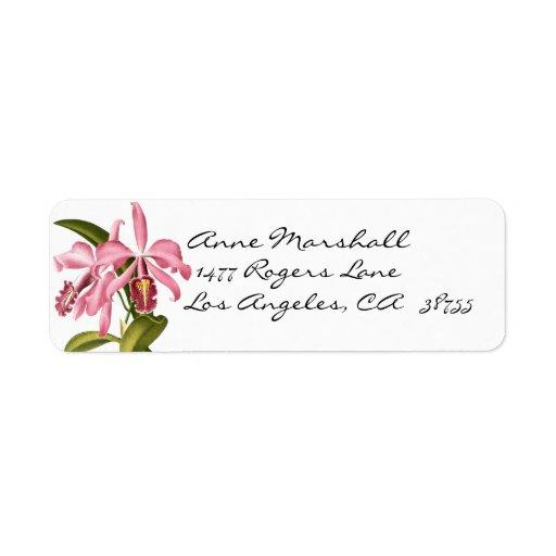 Etiqueta botánica de Avery de las orquídeas del vi Etiquetas De Remite