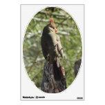 Etiqueta cardinal septentrional femenina de la par