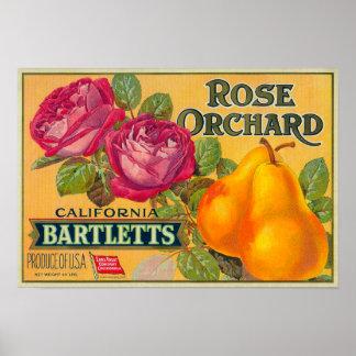 Etiqueta color de rosa del cajón de la pera de la  impresiones