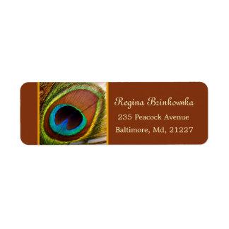 Etiqueta colorida del remite de la pluma del pavo etiqueta de remite