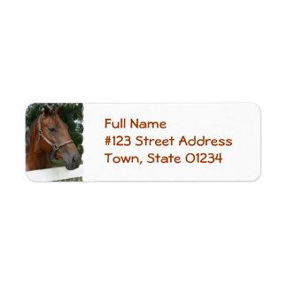 Etiqueta cuarta del remite de la foto del caballo etiquetas de remite