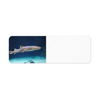 Etiqueta de Avery del tiburón Etiquetas De Remite