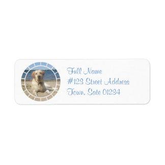Etiqueta de correo amarilla del perro del labrador etiqueta de remite