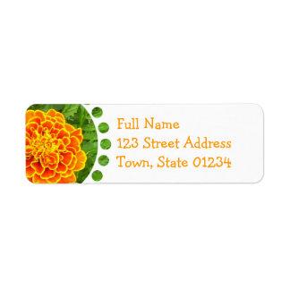 Etiqueta de correo anaranjada de la maravilla etiqueta de remite