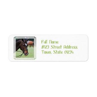 Etiqueta de correo árabe linda del caballo etiquetas de remite
