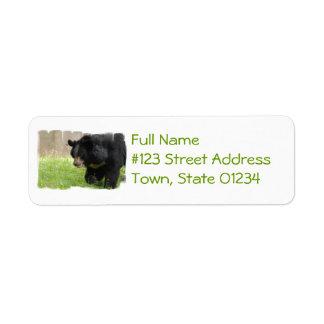Etiqueta de correo asiática del oso negro etiqueta de remite