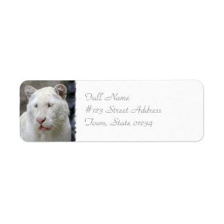 Etiqueta de correo blanca rara del tigre etiqueta de remite