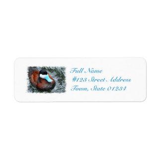 Etiqueta de correo cargada en cuenta azul del pato etiquetas de remite