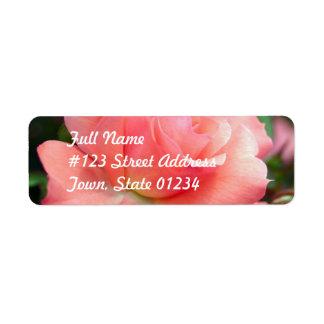 Etiqueta de correo color de rosa rosada etiqueta de remite