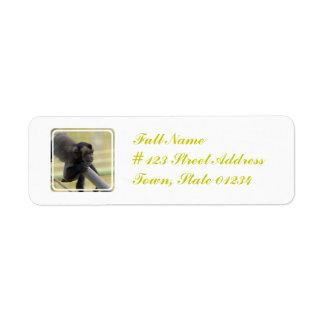 Etiqueta de correo copetuda del mono del capuchón etiqueta de remite