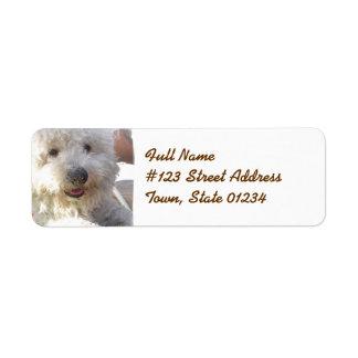 Etiqueta de correo de Bichon Frise Etiqueta De Remitente