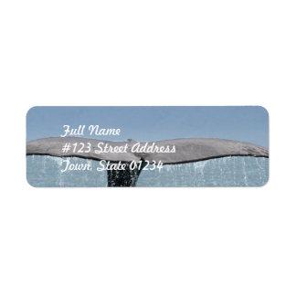 Etiqueta de correo de la cola de la ballena etiquetas de remite