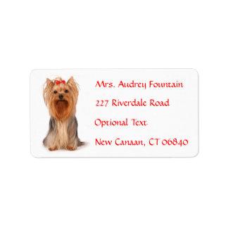 Etiqueta de correo de la dirección del nombre del etiquetas de dirección