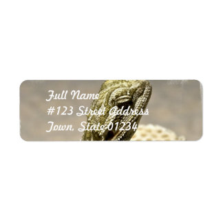 Etiqueta de correo de la especie del lagarto etiqueta de remite