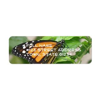 Etiqueta de correo de la mariposa de monarca etiquetas de remite