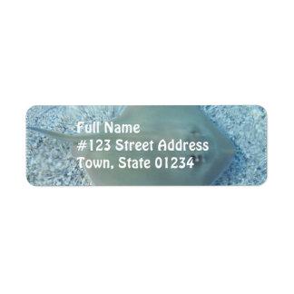 Etiqueta de correo de la pastinaca del agua dulce etiqueta de remitente