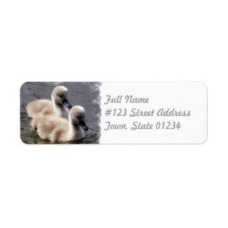 Etiqueta de correo de los cisnes del bebé etiquetas de remite