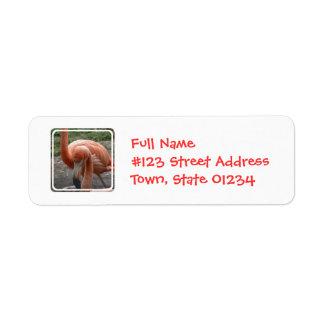 Etiqueta de correo de los flamencos etiqueta de remite