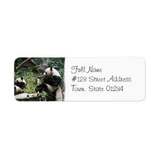 Etiqueta de correo de los osos de panda etiqueta de remite