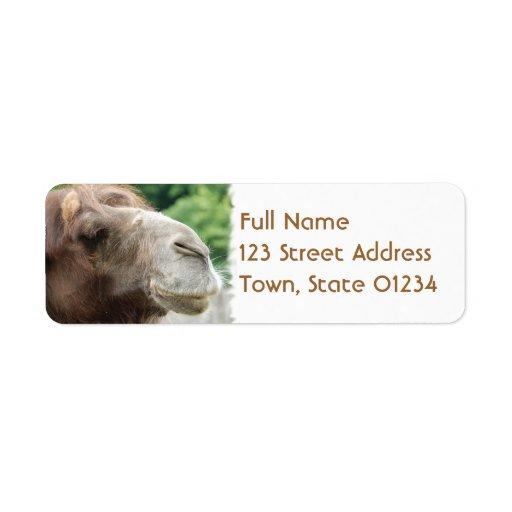 Etiqueta de correo del camello árabe etiquetas de remite