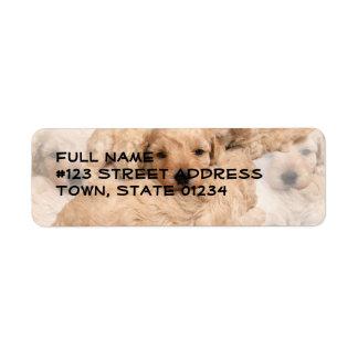 Etiqueta de correo del collage de los perritos del etiqueta de remitente