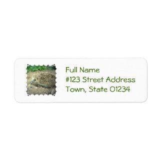 Etiqueta de correo del cuidado del erizo etiqueta de remite