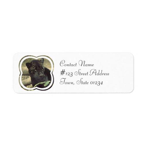 Etiqueta de correo del gato de pantera negra etiqueta de remitente