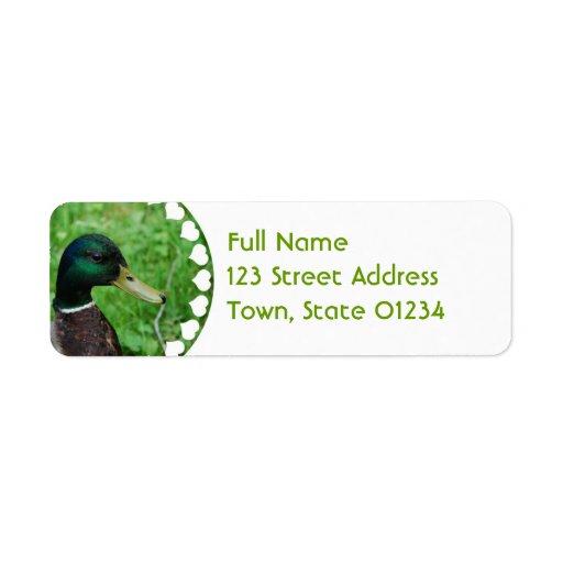 Etiqueta de correo del pato silvestre etiquetas de remite