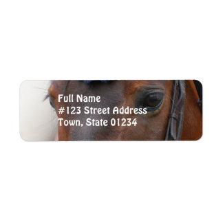 Etiqueta de correo del perfil del caballo etiqueta de remitente