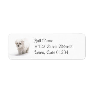 Etiqueta de correo del perro de Bichon Frise Etiqueta De Remitente