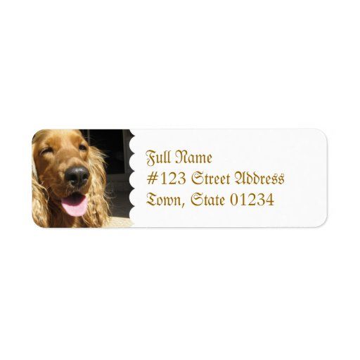 Etiqueta de correo del perro del perro de aguas etiquetas de remite