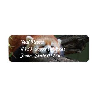 Etiqueta de correo del remite de la panda roja el etiqueta de remitente