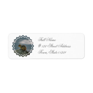 Etiqueta de correo del remite del Chipmunk Etiquetas De Remite