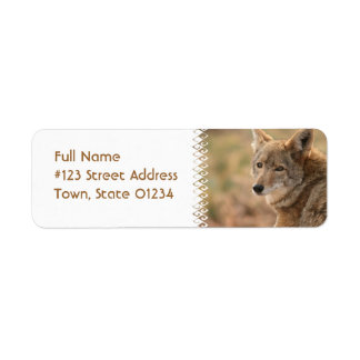 Etiqueta de correo del remite del coyote etiqueta de remite