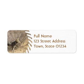 Etiqueta de correo del remite del diseño del etiqueta de remite
