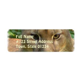 Etiqueta de correo del remite del gato del puma etiquetas de remite
