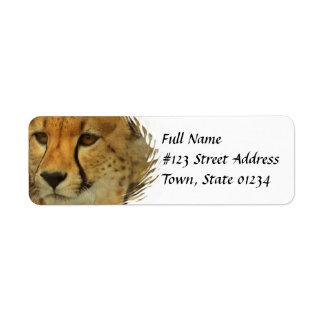 Etiqueta de correo del remite del guepardo etiqueta de remite