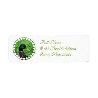 Etiqueta de correo del remite del pato silvestre etiqueta de remite