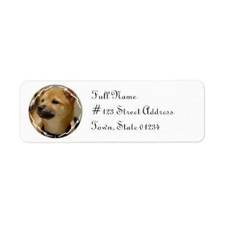 Etiqueta de correo del remite del perro de Akita Etiquetas De Remite