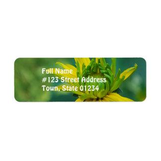 Etiqueta de correo falsa de florecimiento del gira etiquetas de remite